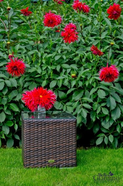 Vrtna miza - SM.002.001